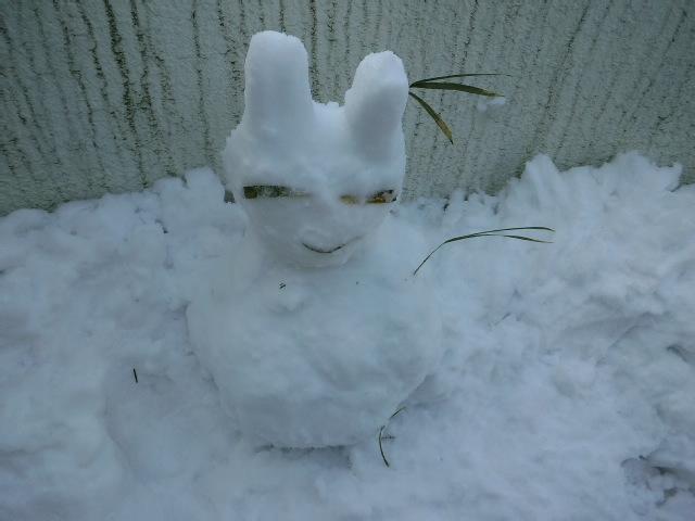 雪上ジョッグ