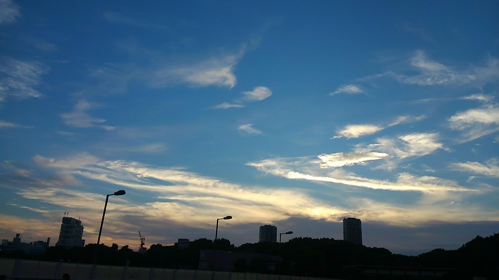 川崎銀座街と東京行灯祭(中野)